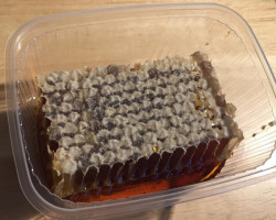 Nid d'abeille de châtaignier (châtaigne environ 125 g)